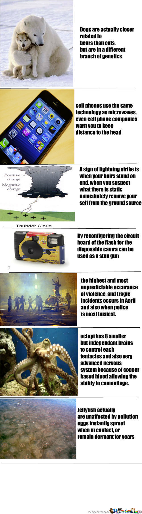 7 Interesting Facts Originally Made By Me