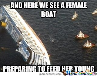 And here we see a female boat preparing to feed her young