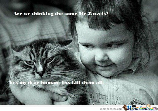 Are we thinking the same Mr.Zazzels?