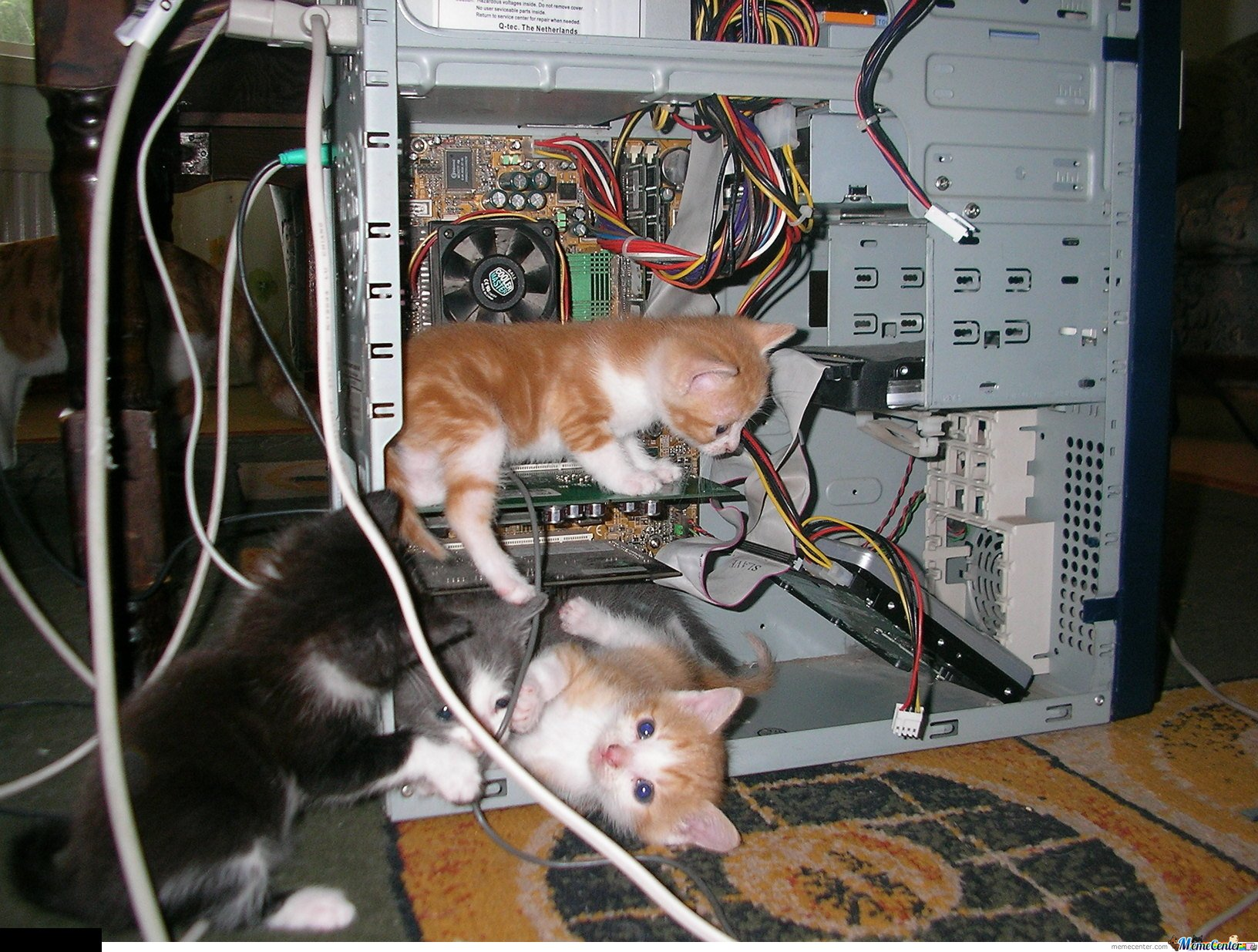 Are You Guys Sure The Problem Is In Video Card By Mustapan Wiring