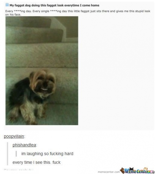 Couldn't stop laughing for half an hour