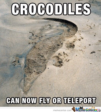 Crocodiles can now teleport