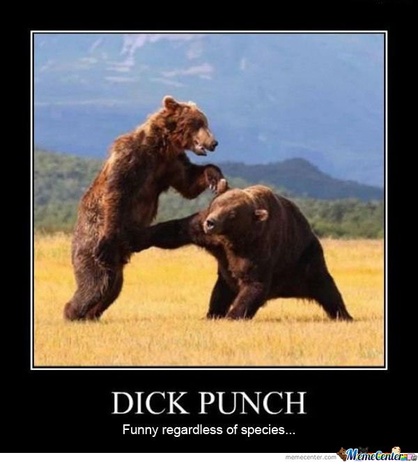 Dick Punch