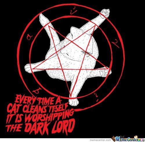 Every Time A Cat Cleans Itself, It Is Worshipping The Dark Lord