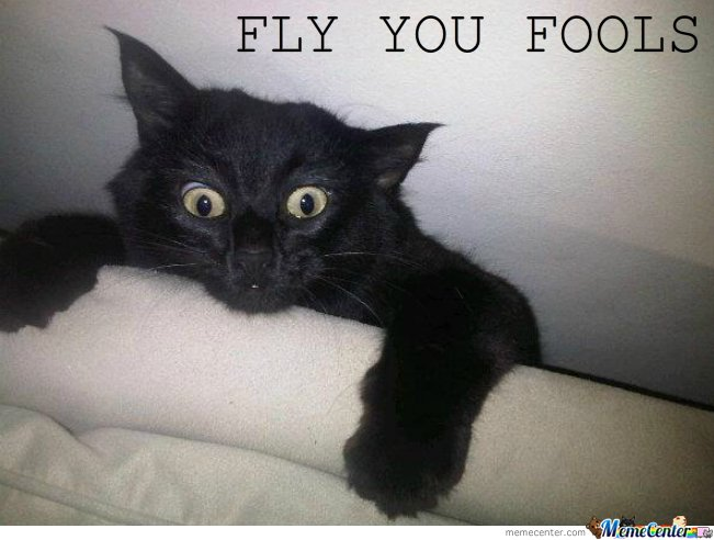 Fly You Fools By Serkan Meme Center