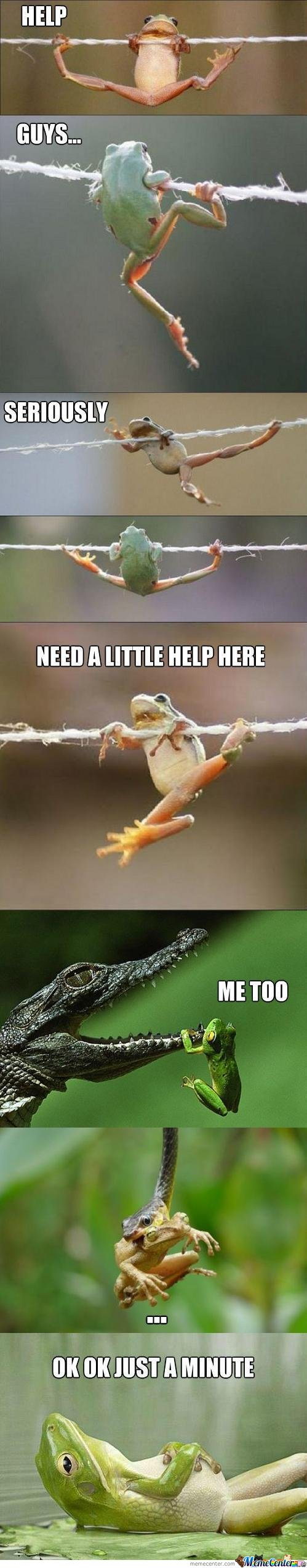 Frog : help guys . need a little help here