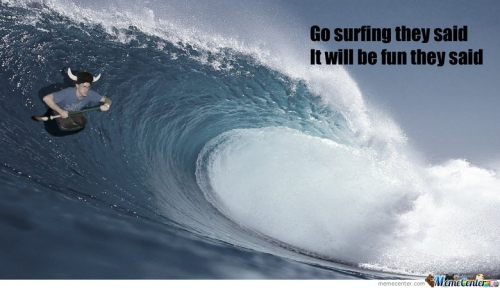 Go surfing they said
