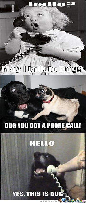 Hello May I Talk To Dog By Ben Meme Center