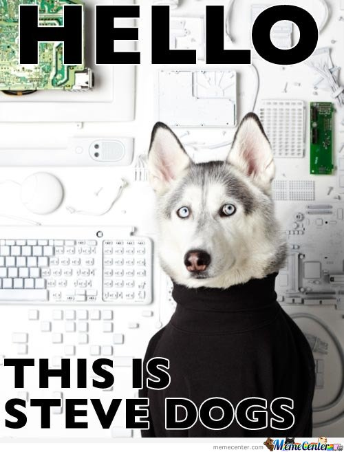 Hello , This is Steve Dogs