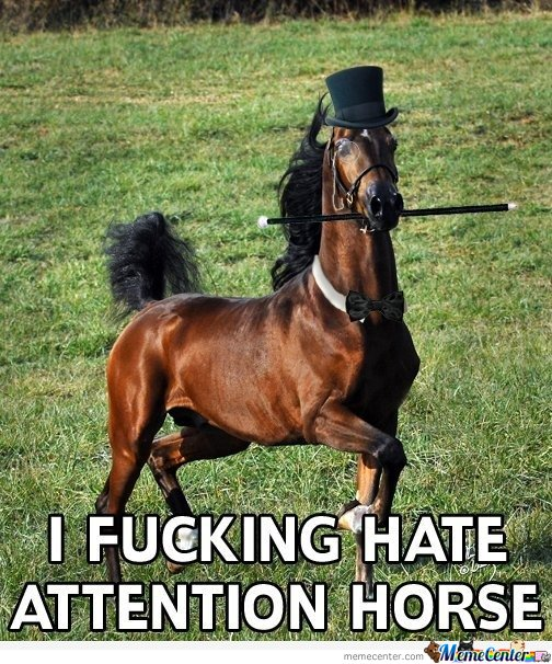 Horse - I f****** hate attention horse