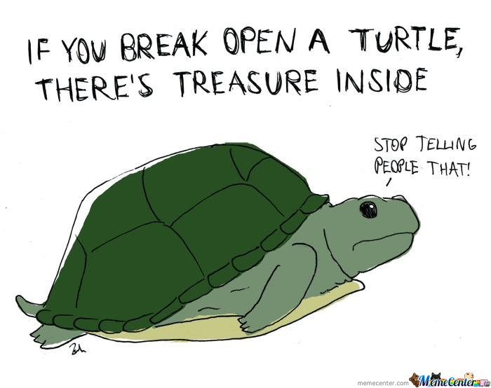 If you break open a turtle there's trause inside