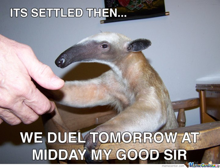 Its Settled Then.. We Duel Tomorrow At Midday My Good Sir