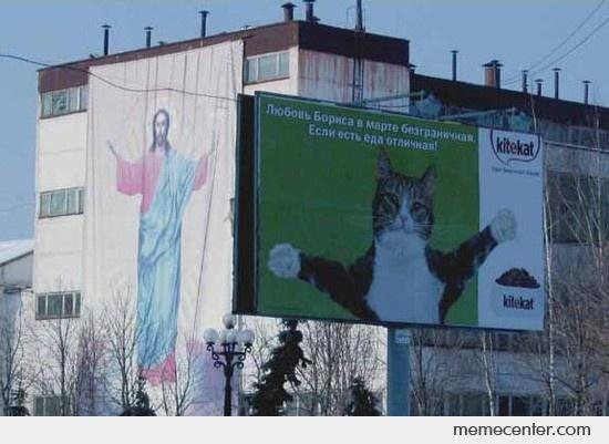 Jesus loves you... so does the cat!