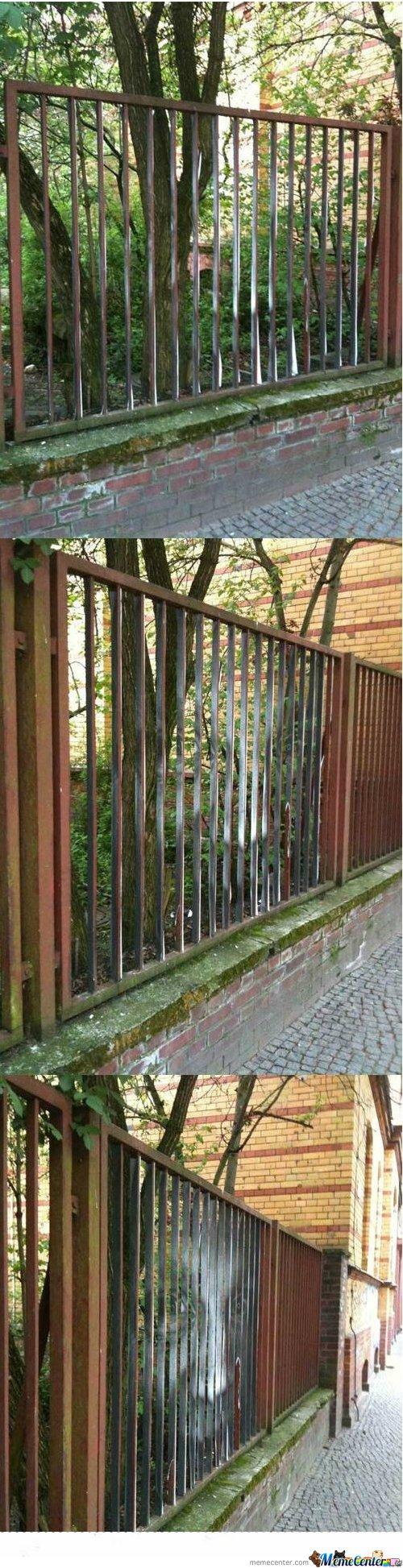 Just A Fence...Wait...OMG
