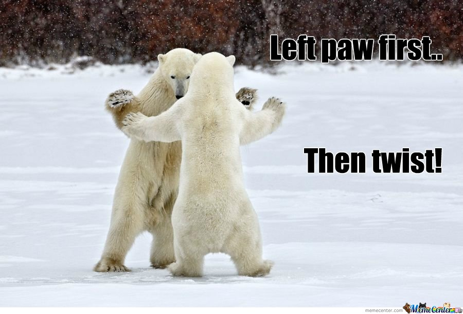 Left paw first