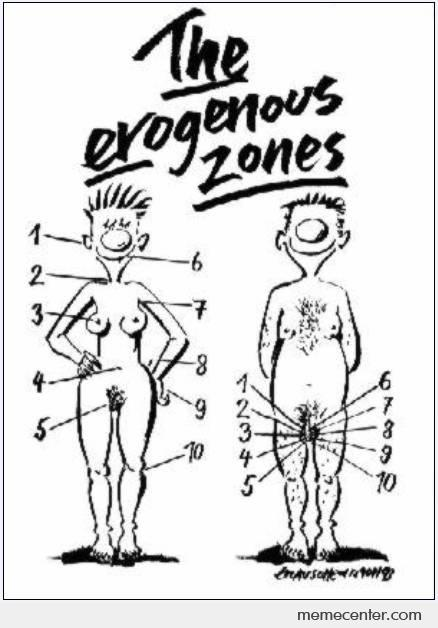 Most erogenous zones