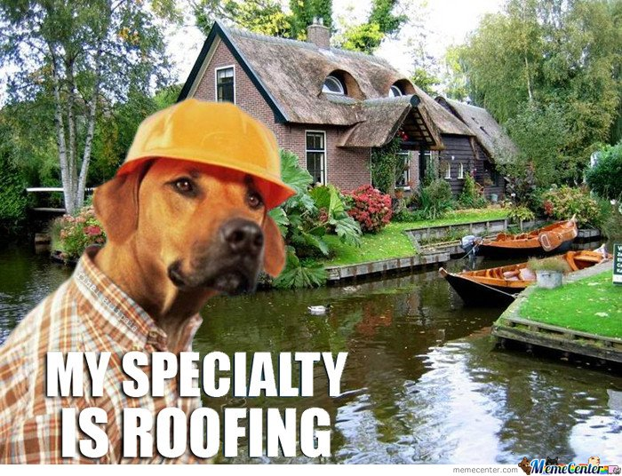 My Speciality Is Roofing