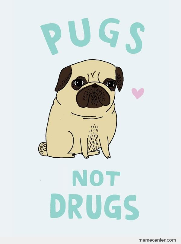 Drugs Are Bad Hot Dog