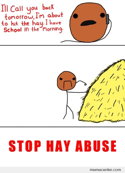 STOP HAY ABUSE