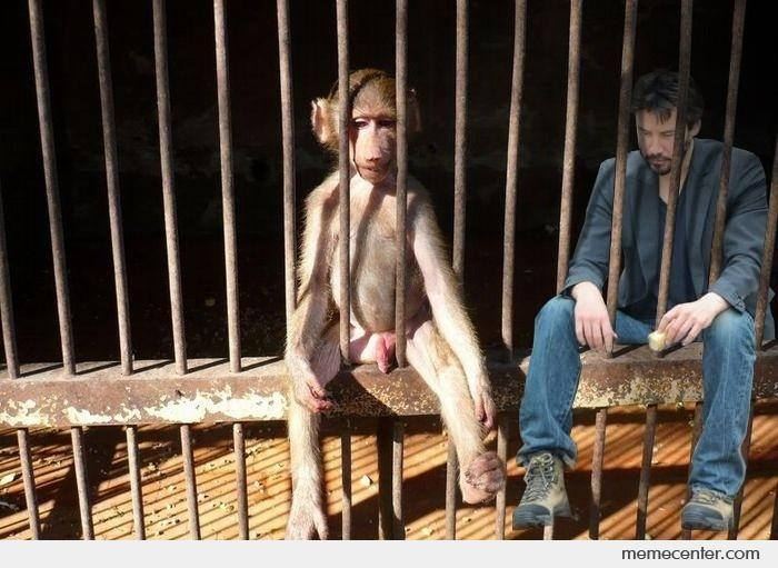 Sad Keanu and Monkey_o_31937 sad keanu and monkey by ben meme center