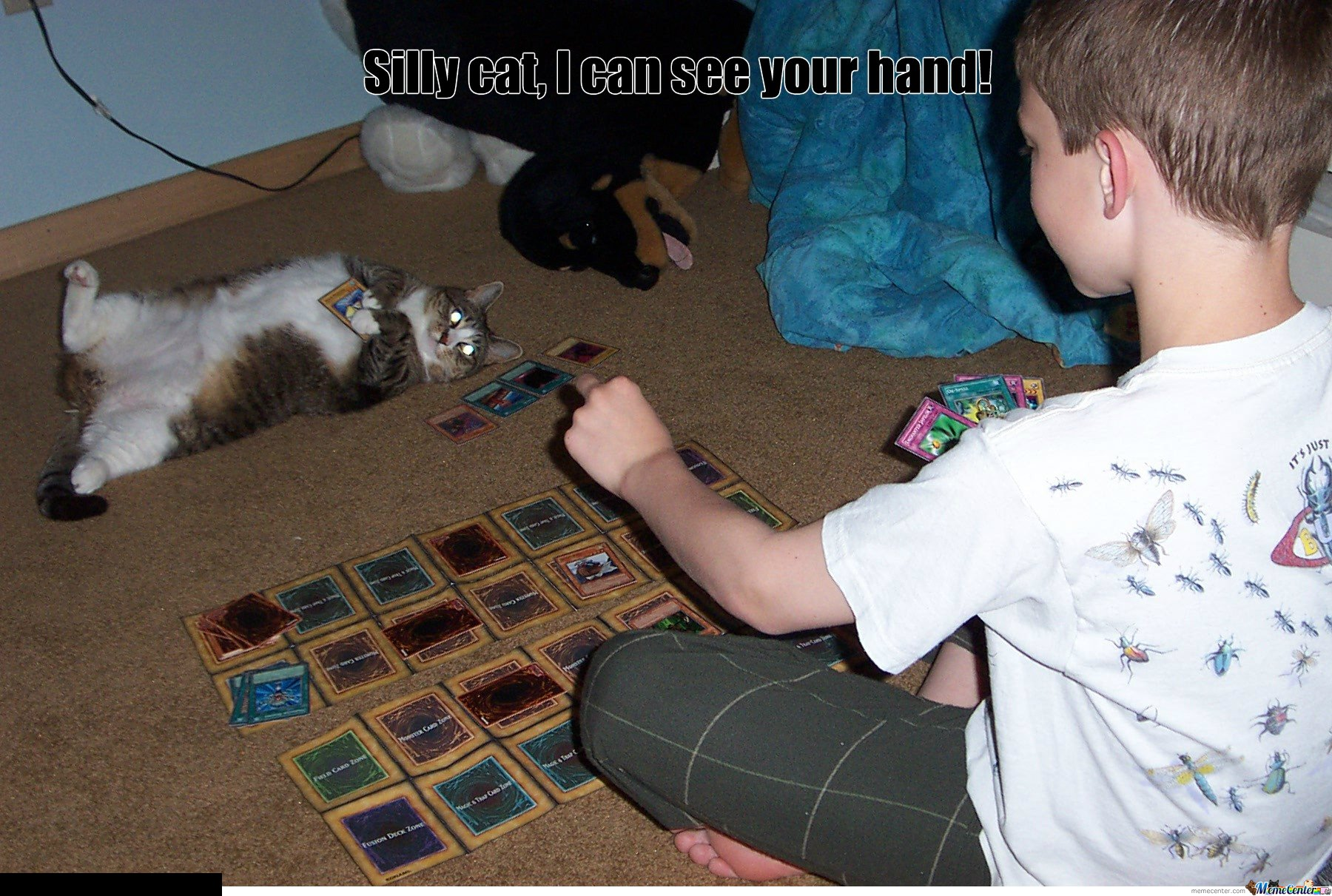Silly cat,  I can see your hand!