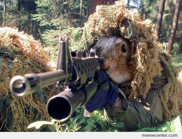 Sniper Squirrel