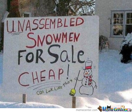 Snow For Sale