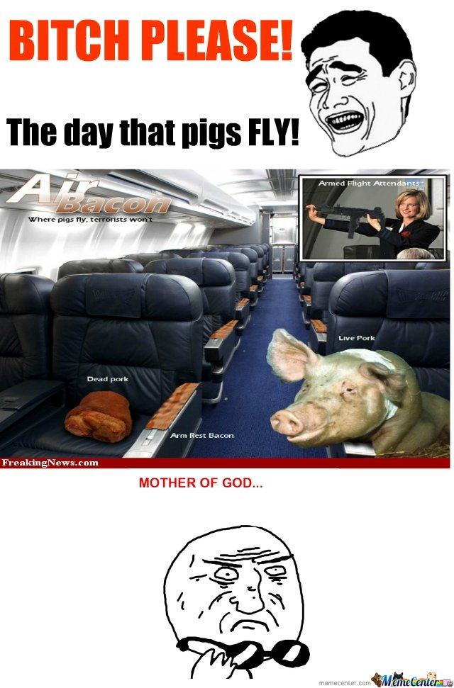 The Day Pigs Fly By Blackhawx798211 Meme Center