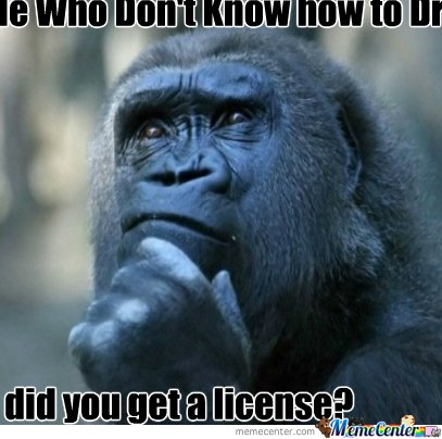 The confused ape_o_139592 the confused ape by recyclebin meme center