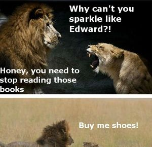 The life of a married man Lions_fb_125558 the life of a married man lions by serkan meme center,Lions Meme