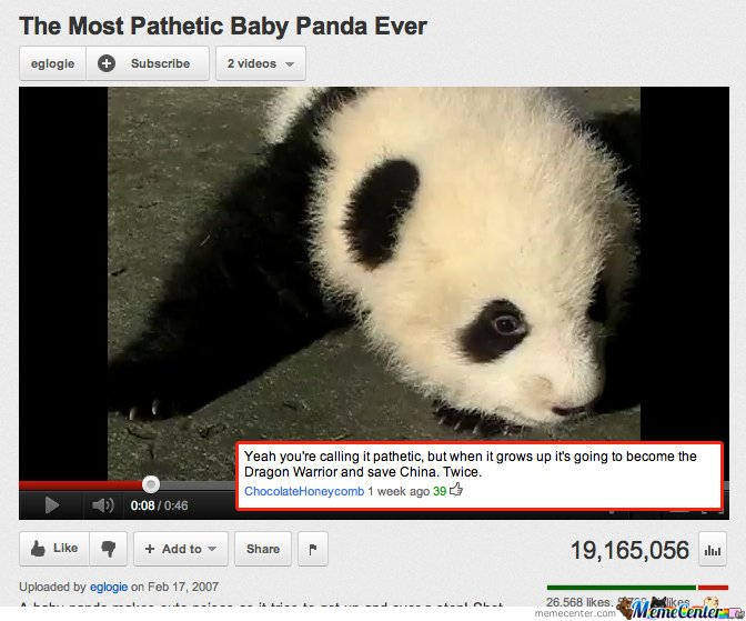The most pathetic baby panda ever - youtube comment
