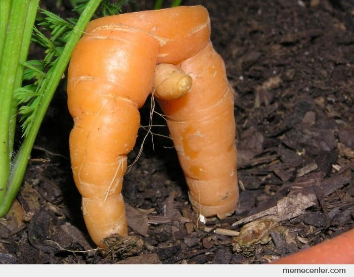 Sex with carrot
