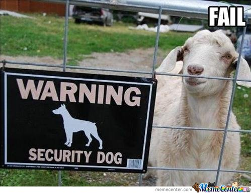 Warning security dog
