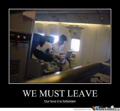 We Must Leave.. Our Love It Is Forbidden
