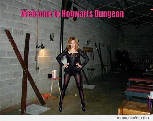 Welcome To The Hogwards Dungeon