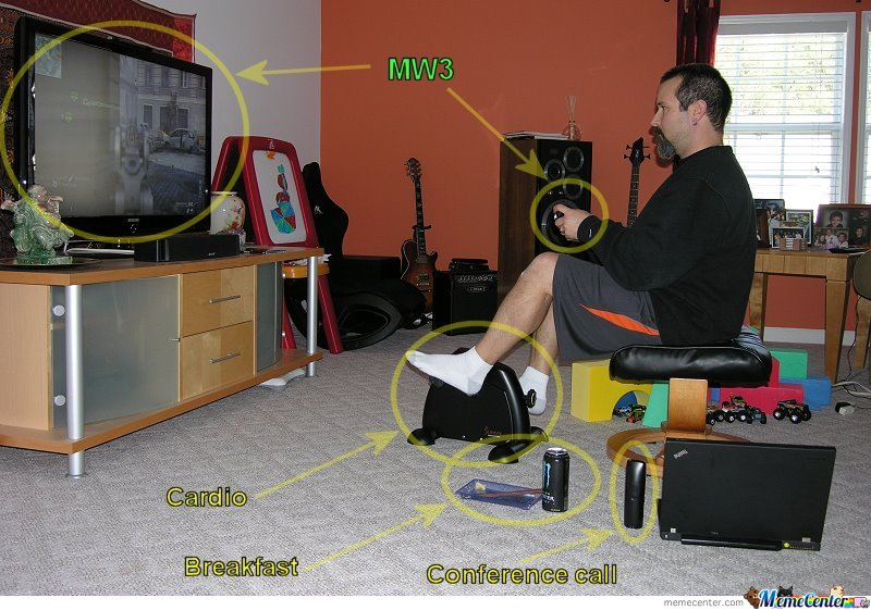 Working from home funny pictures.