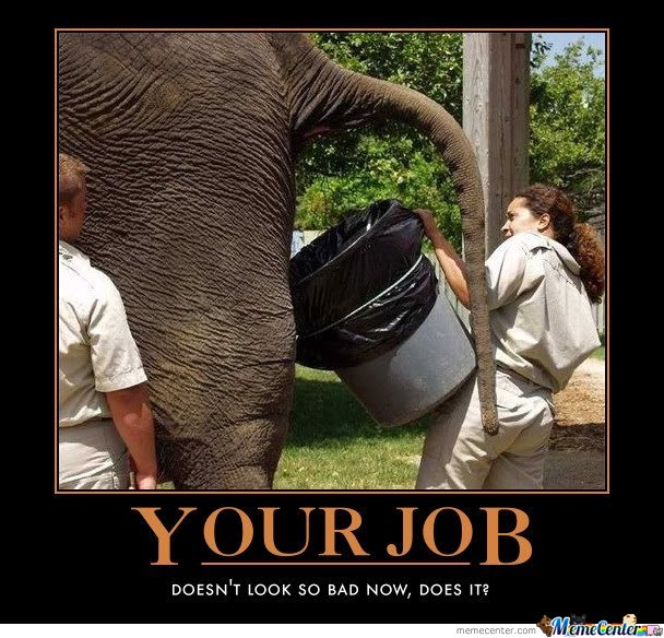 Your Job Doesn't Look So Bad Now..