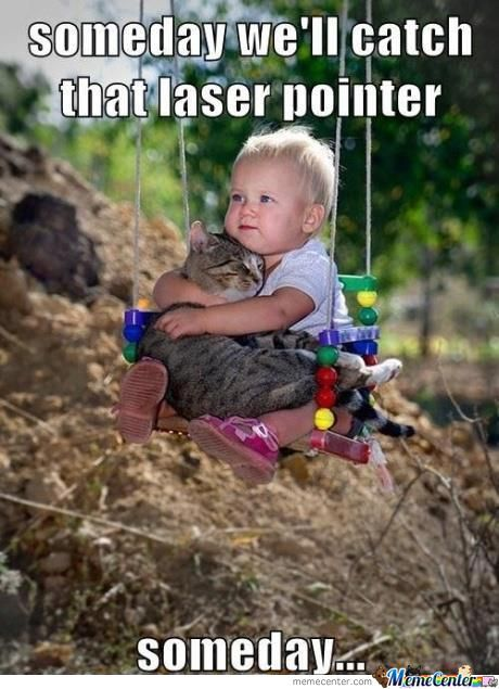 Someday We'll Catch That Laser Pointer