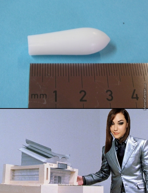 A Dildo For Ants