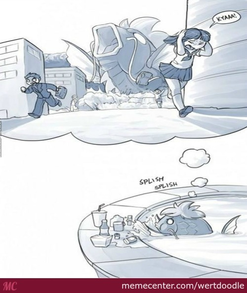 A Magikarp Dreams