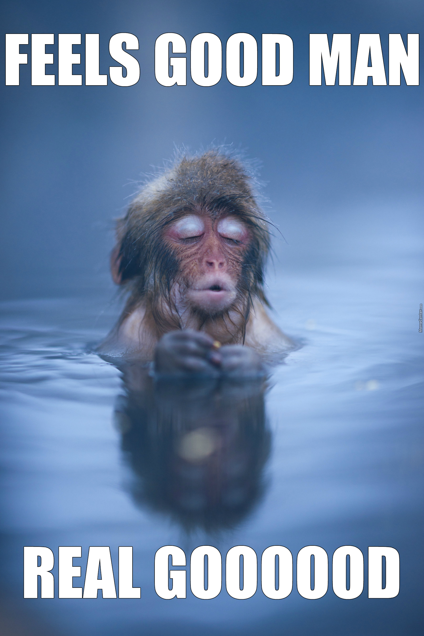 a monkey relaxing in a hot spring_o_3061339 a monkey relaxing in a hot spring by m h m meme center