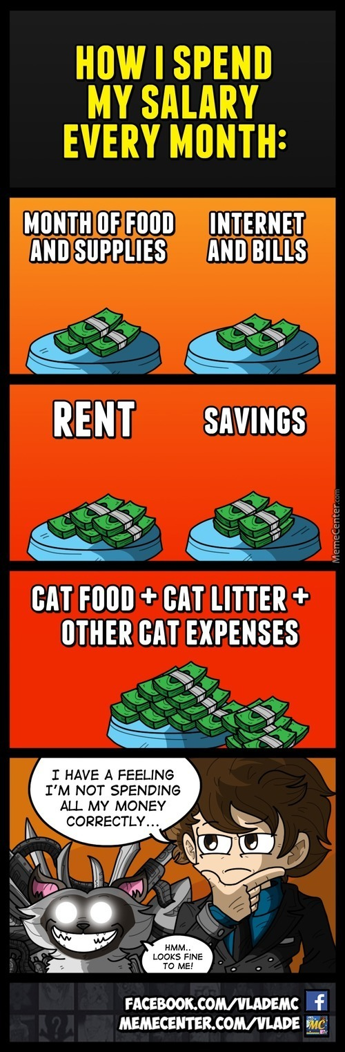 A Pet Owner's Budget