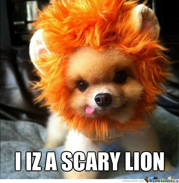 A Scary Lion