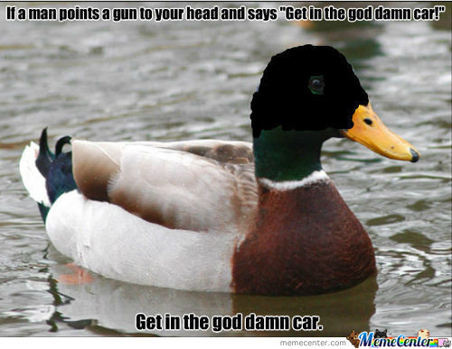 Actual Advice Mallard Is Actually A Robber!