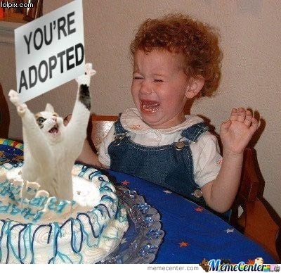 adoption is always funny_o_1648655 adoption is always funny by captainafrica meme center