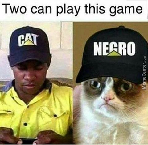 ahead_o_6955629 negro memes best collection of funny negro pictures,Cat Negro Meme