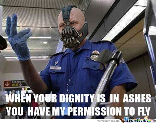 Airport Security Bane