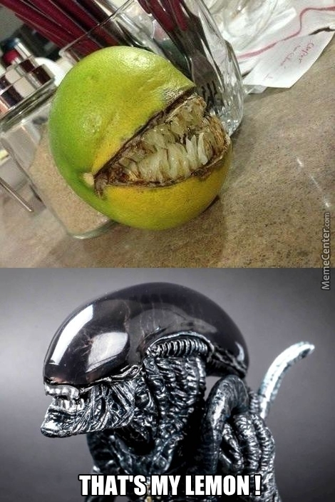 Alien Fruit!
