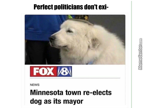 All Politicians Are Dogs