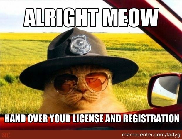Alright Meow